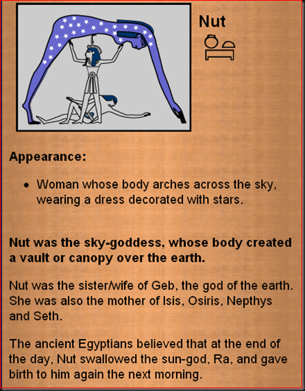 Nut1A