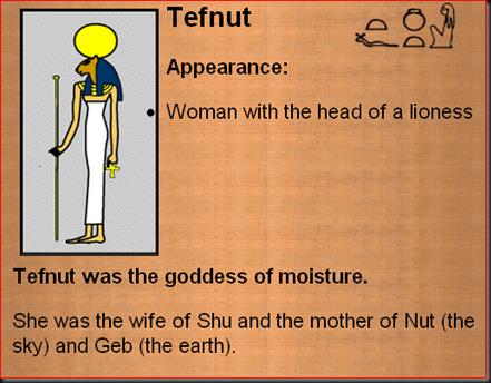 Tefnet